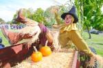 Graham - Scarecrow