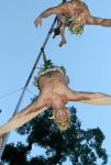Aerial Fauns