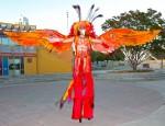 Orange Phoenix