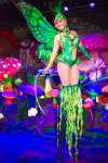 Green Stilted Fairy in Flower Mushroom Garden