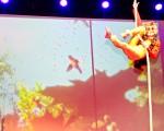 Monkey Aerial