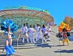 Samba Dancers & Drummers