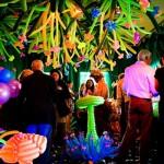 Velocity Circus Enchanted Garden
