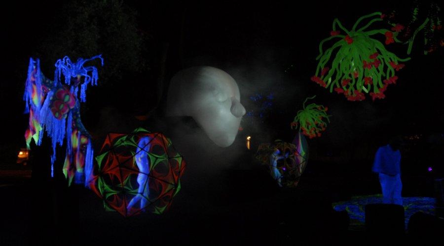 Velocity Circus Illuminated Garden