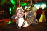 Zebra Contortionist