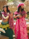 Tiki Hula