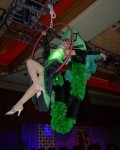Aerial Showgirls