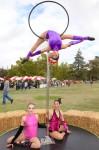 Aerials at Pumpkin Festival