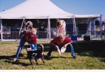 American Frisbee Dogs perform canine acrobatic feats