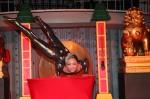 Asian Acrobat