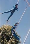 Blu double aerials