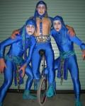 Blu wheel