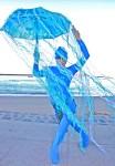 Blu Jellyfish