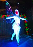 Luminescent Fairy