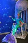 Neverland Mermaid