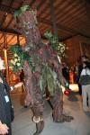 Rain forest tree greeters