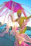 San Francisco Jellyfish
