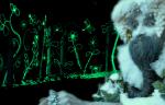 Green garden oracle