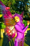 Sleeping Butterfly Fairy