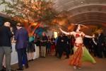 Sword Dance in African Hall
