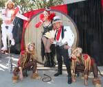 Wheel of Destiny Circus