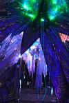 Kaleidoscopic Dream