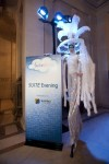 SUITE world evening in San Francisco city hall with stratosphere