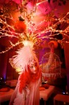 Orange Fairy