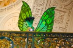 Beaux Arts Butterflies at San Francisco City Hall