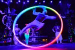Dark Circus Cyr Wheel
