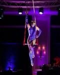 Purple Aerial