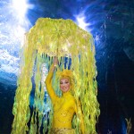 Atlantis Jellyfish